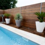 Plunge Into Summer- Why You Need A Plunge Pool