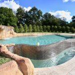 Rock Pool in Grasmere